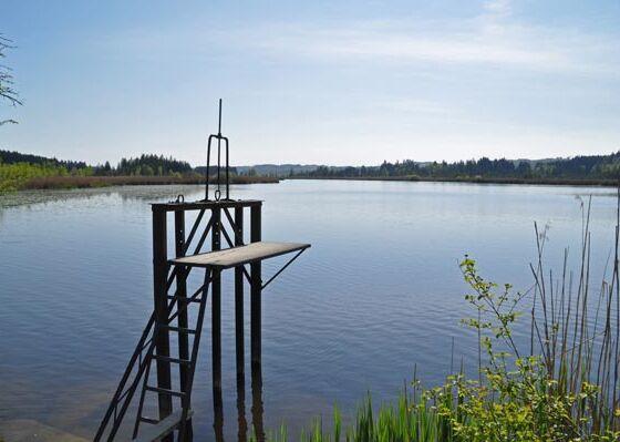 Erfrischung: Maisinger See Sprungturm