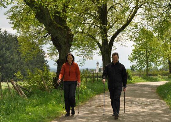 Nordic-Walking an der Ilkahöhe