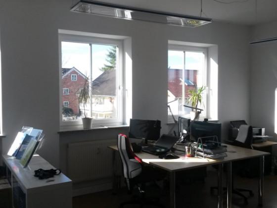 Viel Licht im neuen Büro