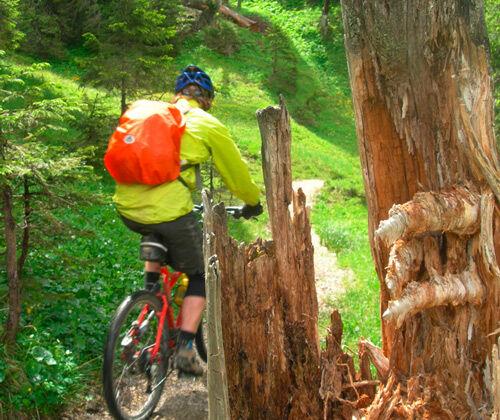 Touren- und Trailsuche im Chiemgau